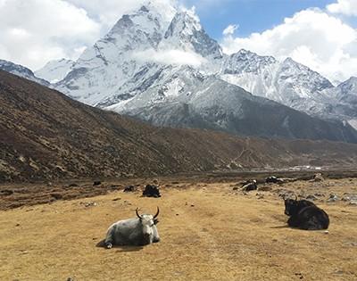 Gokyo Valley Everest Base Camp Trek